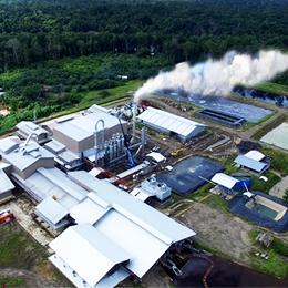 ANJ Agri Papua